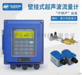 **壁挂式超声波流量计TDS-100