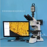 L3230-920HD正置金相顯微鏡 可測量拍照