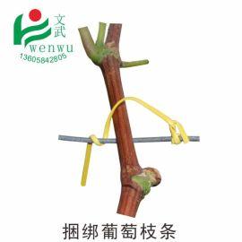 文武包装 绑枝电镀锌铁丝包塑 园林绑葡萄扎带月季绑枝条用的扎丝