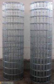 镀锌电焊网、养殖防护网、防护网、玉米网