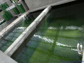 环保型鱼池防水涂料生产厂家,养鱼池隐性漏水止水用密封型环氧鱼池防水防腐漆