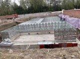 定制  地上式箱泵一體化BDF水箱