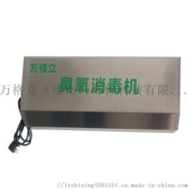 臭氧发生器壁挂式5克