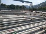 浙江現貨供應 16*1 TP316L不鏽鋼管