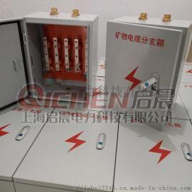 铜排电缆分支箱 电缆T接箱 款物质铜排绝缘子转接箱