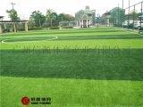 人造草足球場建設廠家環保人造草足球場施工建設