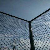 綠色浸塑防鏽籃球場防護網 菱形彈力小區活動場護欄球場圍欄批發