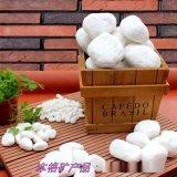 廠家直銷園藝白石子 白色鵝卵石 鋪面裝飾小白石頭