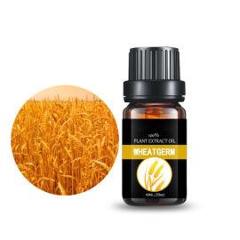 小麦胚芽油 压榨提取 基础油 化妆品原料