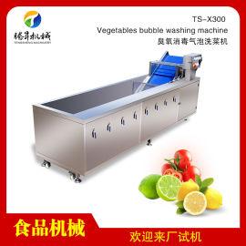 净菜配送中心清洗设备 气泡洗菜机厂家