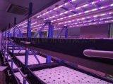 led植物燈,植物補光燈,植物生長燈,長條植物燈