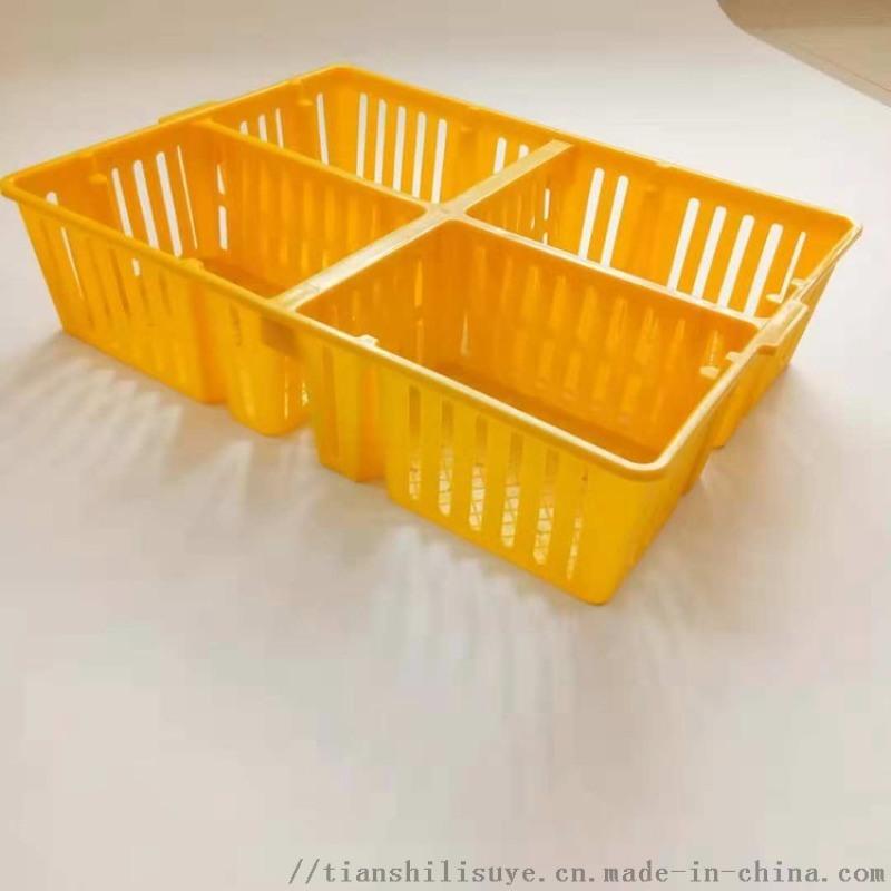 透气鸡鸭苗运输筐 鸡苗运输箱 带隔断鸡苗筐