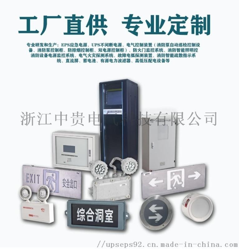 江苏上海消防应急照明智能疏散指示灯具 集中电源