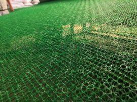 三维植被网 高密度聚乙烯  山东东岳厂家直销