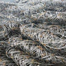 河北山体支护防护网优质供应商