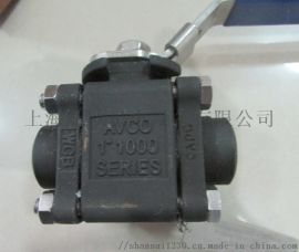 AVCO孔板 1113PG-BW-100-