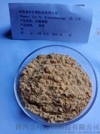 天然水溶沙棘果粉