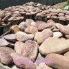 本格廠家直銷 鵝卵石 鵝卵石切片 內外牆裝飾鋪路石