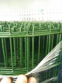 建筑浸塑电焊网用作防护网防护栏