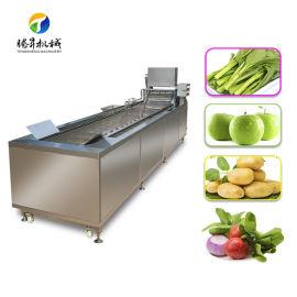 柑橘水果清洗机,气泡臭氧蔬菜洗菜机TS-X300