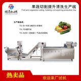 水果蔬菜切割提升清洗生产线
