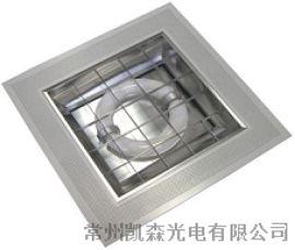 高品质稳定 格栅灯 无极灯 植物生长灯