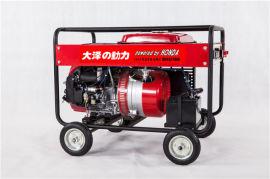 大泽动力190A发电电焊两用机