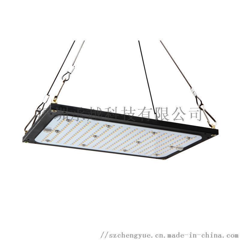 承越全光谱植物生长灯150W量子板led补光灯