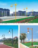 成都庭院灯4米30瓦——四川庭院灯厂家定制、直销