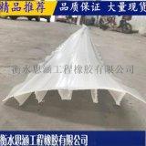 方孔塑料止水带 生产现货 外贴PVC止水带