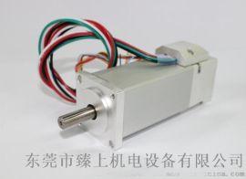 高低温特种伺服电机适用-60℃耐高低温电动缸