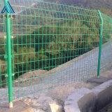 圈地绿色钢丝网/果园隔离防护网