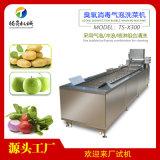 蔬菜水果气泡清洗机,臭氧去农残洗菜机
