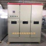 高压鼠笼电机水阻柜水阻柜 襄阳帅龙机电SYD3水阻柜