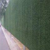 牆體掛的聚乙烯阻燃人造草坪