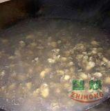 论生蚝烘干机的实用性和烘干步骤