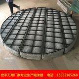 PP丝网除沫器 聚乙烯丝网除沫器 不锈钢丝网除沫器老厂