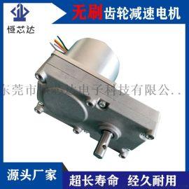 颗粒炉烧烤炉壁挂炉取暖绞龙直流无刷送料电机减速电机