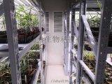 武汉叶动力植物组培室实验室项目建设技术指导