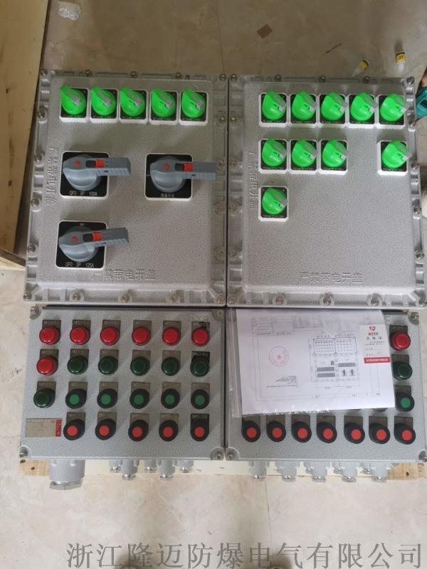 防爆配電箱BXM(D)53-2/K100