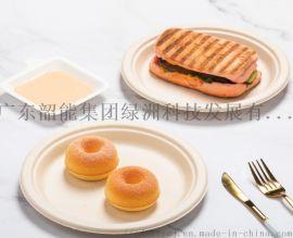 韶能绿洲一次性环保蔗浆纸盘圆形家用装菜纸碟子餐具纸浆野餐蛋糕盘子绘画手工