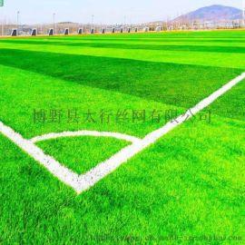 厂家直销 足球场人造草坪 围挡仿真草坪网