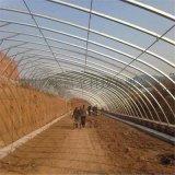 濰坊青州本地日光溫室日光薄膜溫室建設工程