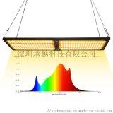 多肉盆栽生长灯240W量子板植物培育灯