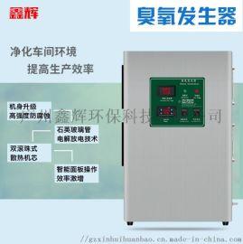 鑫辉臭氧发生器  化妆品厂幼儿园空间消毒机