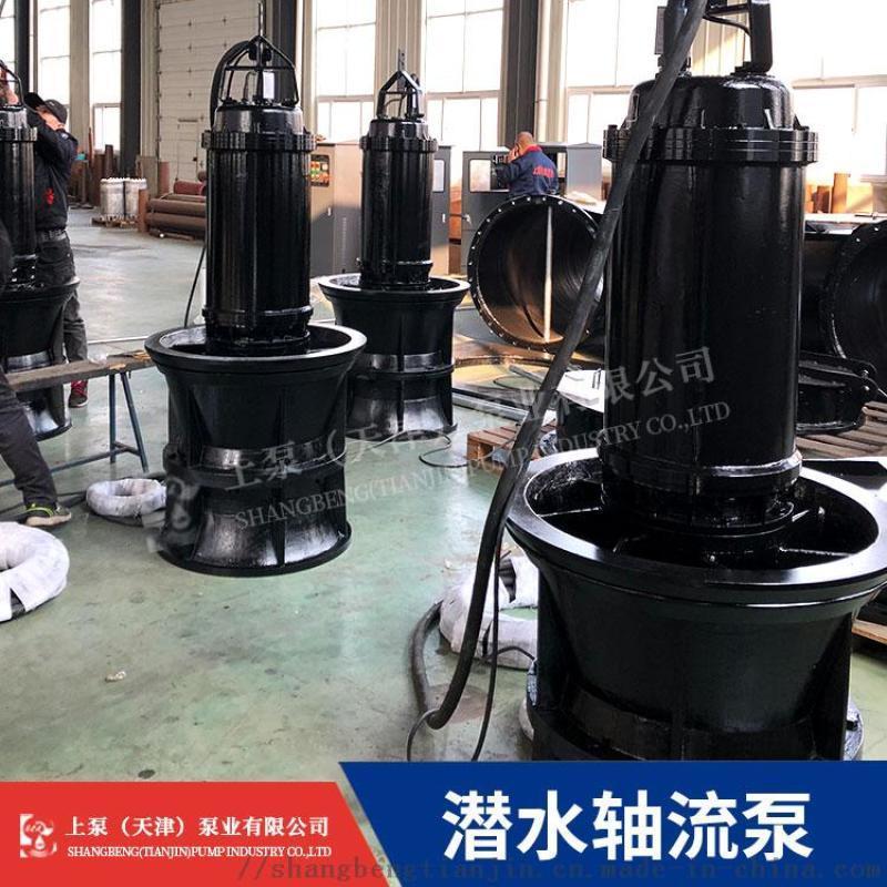 四川潛水軸流泵選型 QZB潛水軸流泵廠家