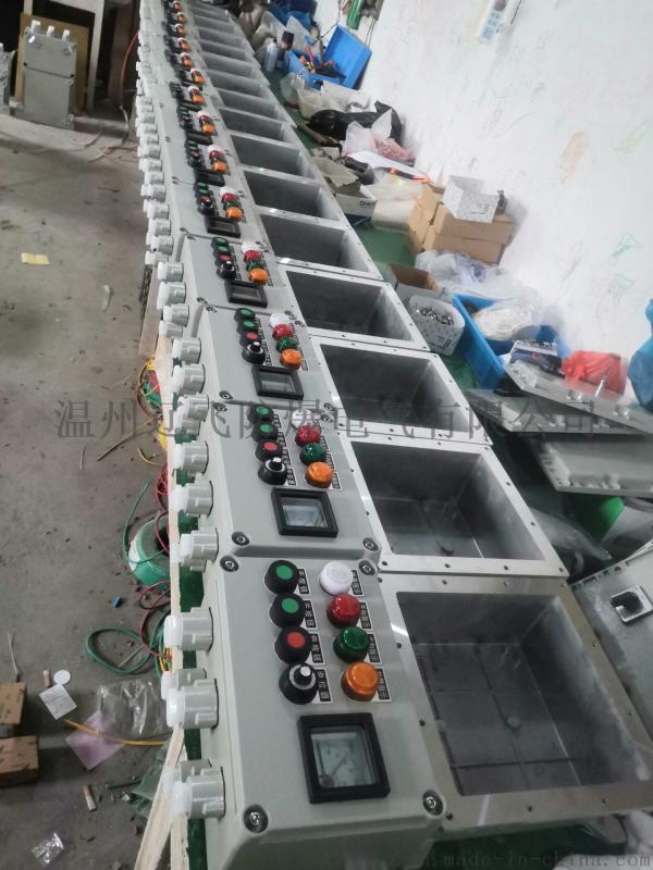 DIPA21粉尘防爆照明配电箱