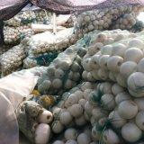 ABS塑料材質垂釣航海河道浮標浮子