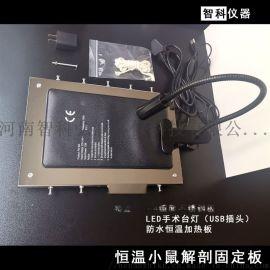 恒温大小鼠解剖台-大小鼠固定板-解剖台