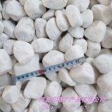 沧州本格供应枯山水白石子 白色鹅卵石 白色机制石